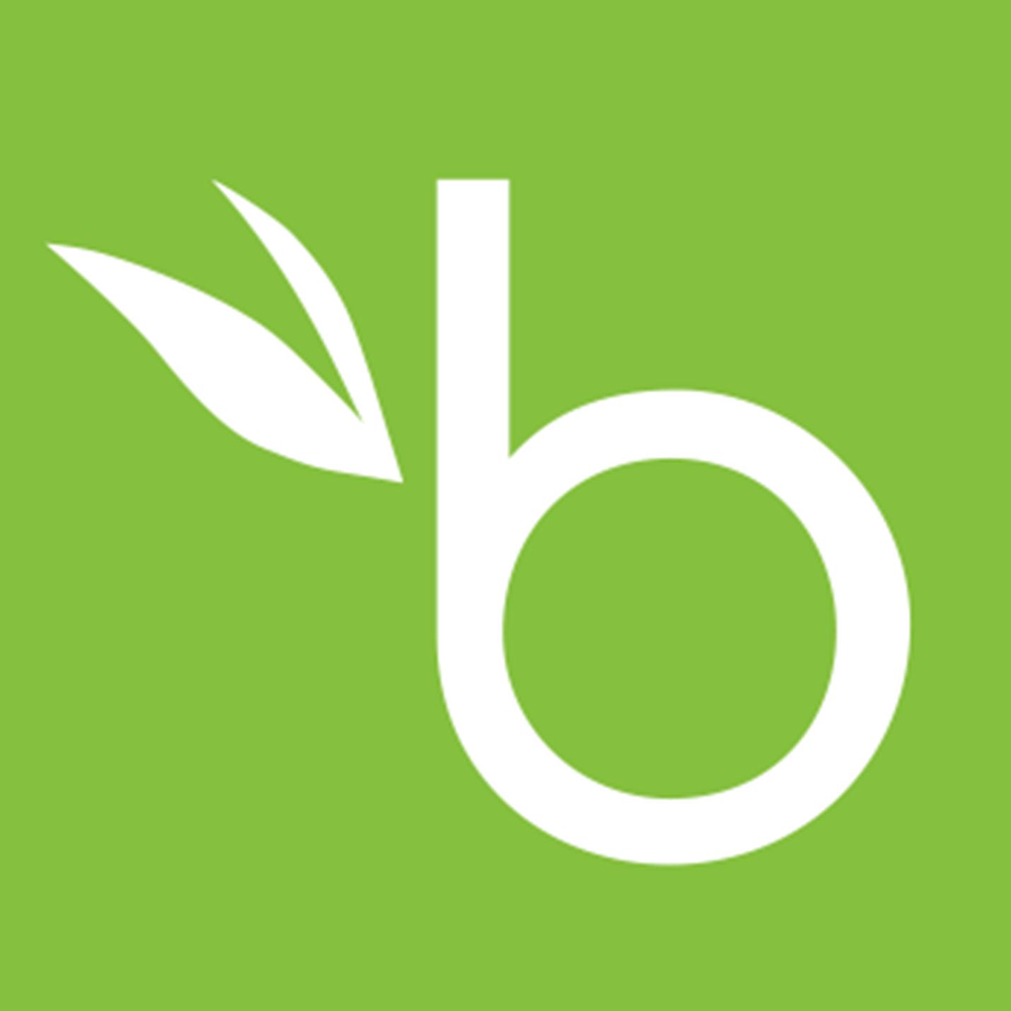Логотип -системы BambooHR