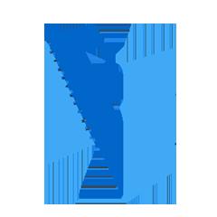 Логотип SCM-системы Forecast NOW