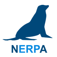 Логотип СУ ТОиР-системы NERPA EAM