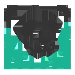 Логотип СМА-системы PandaRank