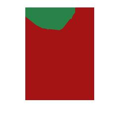Логотип СУ ТОиР-системы Rubius DrEAM