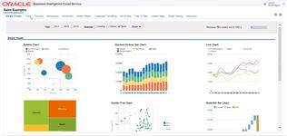 Информационные панели для принятия решений в системе бизнес-аналитики Oracle Business Intelligence Cloud Service