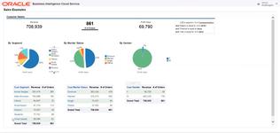Демографический анализ клиентских сегментов в аналитическом облачном-сервисе Oracle BI Cloud Service