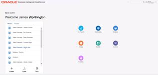 Рабочее меню в программе бизнес-аналитики Oracle BI Cloud Service